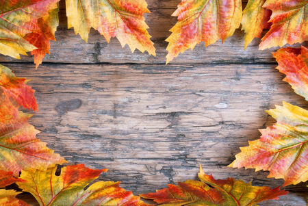 Colorful Maple Leaves Building a Heart Frame on Wood with Copy Space for Your Text photo