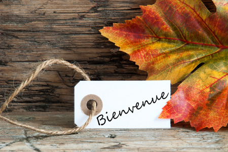 The French Word Bienvenue, which means Welcome, on a Label with Falll Leaves photo