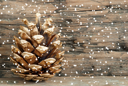 Golden Fir Cone on Wood with Snow as Christmas or Winter Background