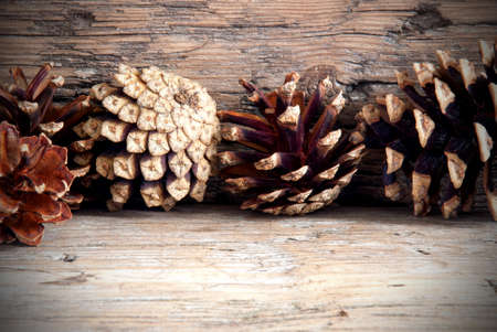 Natural Autumn Background with Fir Cones on Wood and Copy Space photo