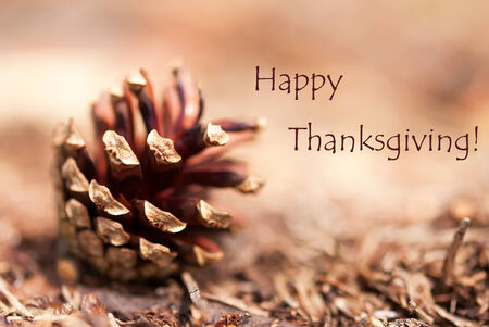 Fir Cone Closeup as Autumn Background with the Words Happy Thanksiving photo