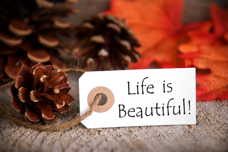 healthfulness: A Fall Label with the Words Life is Beautiful