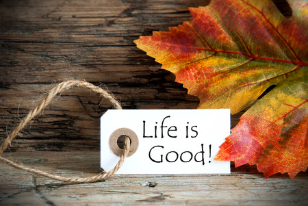 healthfulness: Autumnal Label with the Words Life is Good on it Stock Photo