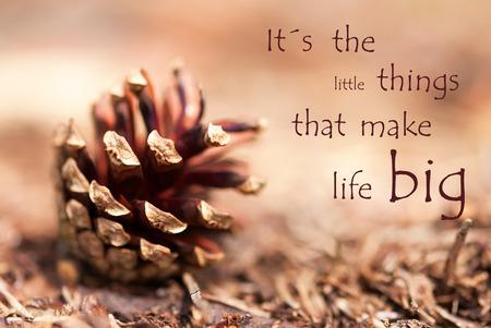 Cono de abeto con el dicho de las pequeñas cosas que hacen la vida grande como fondo de otoño