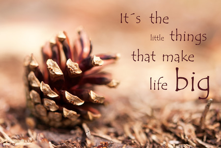 Tannenzapfen mit dem Sprichwort Sein sind die kleinen Dinge, die das Leben groß machen wie Herbst Hintergrund
