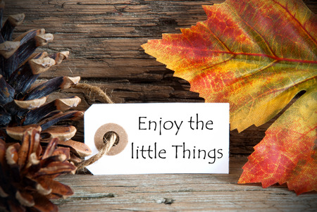 A Fall Label with the Life Quote Enjoy the little Things, on Wood