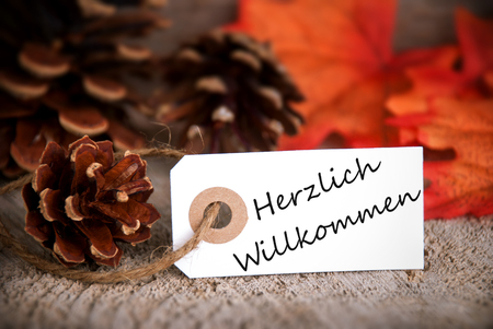 willkommen: The German Words Herzlich Willkommen, which means Welcome, on a Label as Fall Background Stock Photo