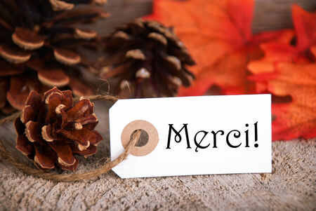 merci: Autumn Label with the French Word Merci, which means Thanks