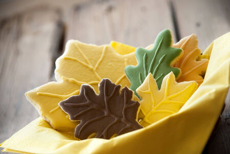 bickie: Colorful Autumn Biscuits in a Bowl with Wooden Background