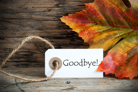 A Autumnal Background with a Label on which stands Goodbye Stock Photo