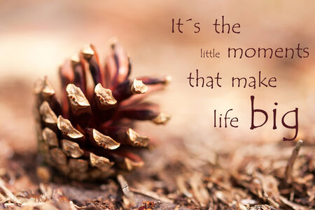 Brown Autumn Background with a Fir Cone and the Quote Its the little Moments that make Life Big photo