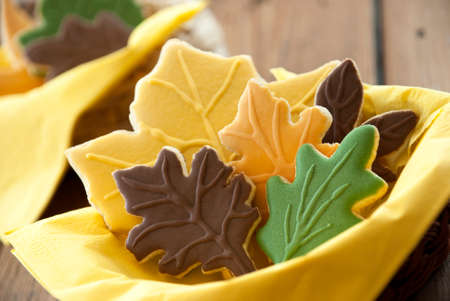 bickie: Autumn Biscuits in different Fall Colors as Closeup