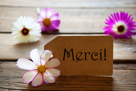 merci: Brown Label With French Text Merci With Purple And White Cosmea Blossoms On Wooden Background Vintage Retro Or Rustic Style Stock Photo