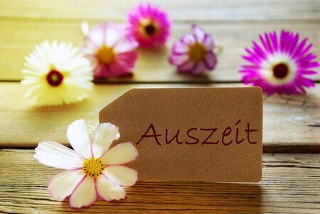 auszeit: Brown Label With Sunny Yellow Effect With German Text Auszeit With Purple And White Cosmea Blossoms On Wooden Background Vintage Retro Or Rustic Style Stock Photo