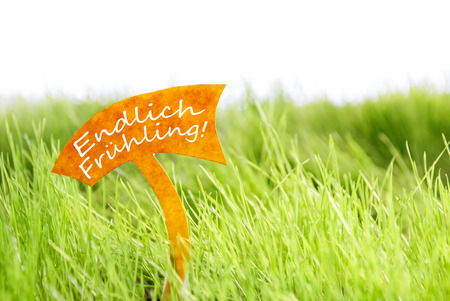 sprung: Label With German Text Endlich  Fruhling Which Means Spring Has Sprung On Sunny Green Grass For Spring Or Summer Feeling