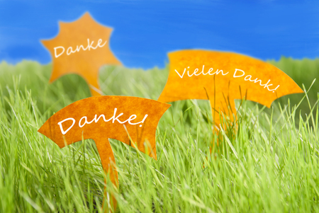 thankfulness: Three Labels With German Text Danke And Vielen Dank Which Means Thank You And Thank  You Very Much On Sunny Green Grass For Spring Or Summer Feeling And Blue Sky