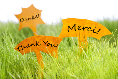 french text: Three Labels With German Text Danke And French Text Merci Which Means Thank You On Sunny Green Grass For Spring Or Summer Feeling Stock Photo