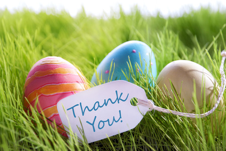 Colorful Easter Background With Three Easter Eggs And Label With English Text Thank You On Green Grass For Happy Easter Seasons Greetings Фото со стока