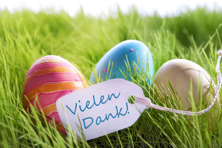 dank: Colorful Easter Background With Three Easter Eggs And Label With German Text Vielen Dank On Green Grass For Happy Easter Seasons Greetings