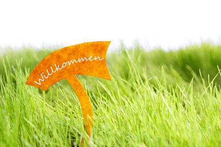 willkommen: Label With German Text Willkommen Which Means Welcome On Sunny Green Grass For Spring Or Summer Feeling