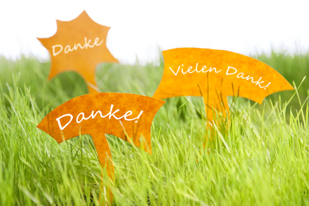 dank: Three Labels With German Text Danke And Vielen Dank Which Means Thank You And Thank  You Very Much On Sunny Green Grass For Spring Or Summer Feeling