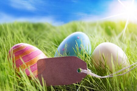 estival: Three Colorful Easter Eggs On Green Grass With Label With Copy Space Free Text Or Your Text Here For Happy Easter Greetings And Sunny Blue Sky Archivio Fotografico