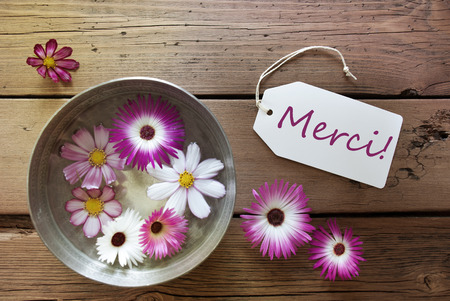 french text: Silver Bowl With Label With French Text Merci With Purple And White Cosmea Blossoms On Wooden Background Vintage Retro Or Rustic Style