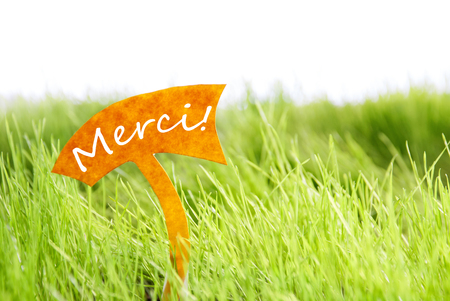 merci: Label With French Text Merci Which Means Thank You On Sunny Green Grass For Spring Or Summer Feeling
