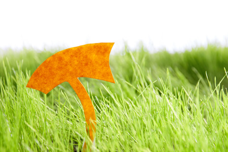 Empty Label For Copy Space Or Free Text Or Your Text Here On Green Grass Spring Summer Sunny Feeling Stock Photo