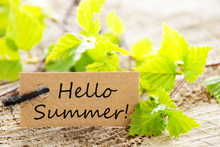 english text: Brown Label With Black Ribbon And English Text Hello Summer With Green Branches On Wooden Background Stock Photo