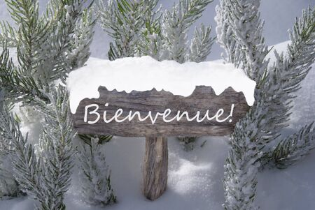 french text: Wooden Christmas Sign With Snow And Fir Tree Branch In The Snowy Forest. French Text Bienvenue Means Welcome For Seasons Greetings Or Christmas Greetings. Christmas Atmosphere.
