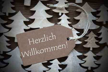 willkommen: Brown Christmas Label With Ribbon On Wooden Christmas Trees Background. Vintage Style. Label With German Text Herzlich Willkommen Means Welcome For Christmas Or Season Greetings.Close Up Or Macro