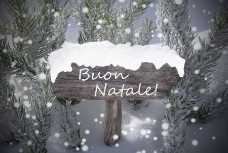 buon: Wooden Christmas Sign With Snow And Fir Tree Branch In The Snowy Forest. Italian Text Buon Natale Means Merry Christmas For Seasons Greetings. Christmas Atmosphere With Snowflakes