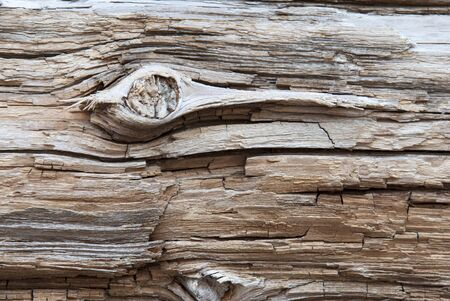 knothole: Rustic Brown Wooden Texture Or Background With Knothole. White Texture in Vintage Or Retro Style. Copy Space For Advertisement Or Your Free Text Here Stock Photo