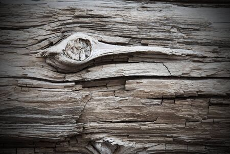 knothole: Rustic Brown Wooden Texture Or Background With Knothole And Frame. White Texture in Vintage Or Retro Style. Copy Space For Advertisement Or Your Free Text Here Stock Photo