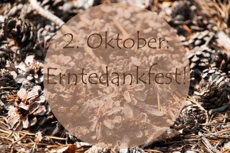 greeting season: Texture Of Fir Or Pine Cone. Autumn Season Greeting Card. German Text Erntedankfest Means Thanksgiving Stock Photo