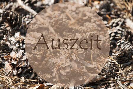 greeting season: Texture Of Fir Or Pine Cone. Autumn Season Greeting Card. German Text Auszeit Means Relax Stock Photo