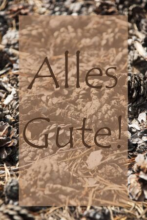 greeting season: Vertical Texture Of Fir Or Pine Cone. Autumn Season Greeting Card. German Text Alles Gute Means Best Wishes