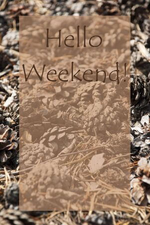greeting season: Vertical Texture Of Fir Or Pine Cone. Autumn Season Greeting Card With Copy Space For Free Text. English Text Hello Weekend