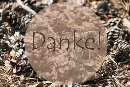 thankfulness: Texture Of Fir Or Pine Cone. Autumn Season Greeting Card. German Text Danke Means Thank You