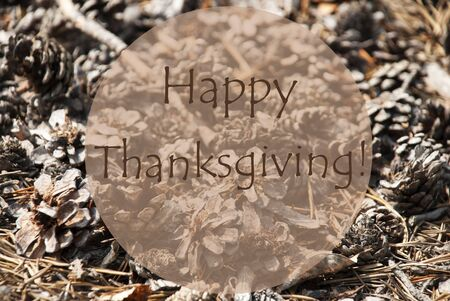 thankfulness: Texture Of Fir Or Pine Cone. Autumn Season Greeting Card. English Text Happy Thanksgiving