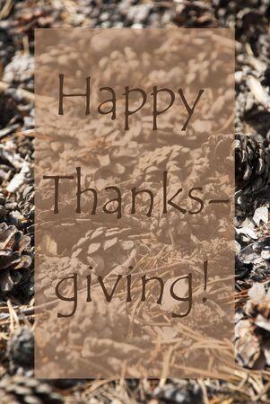 greeting season: Vertical Texture Of Fir Or Pine Cone. Autumn Season Greeting Card. English Text Happy Thanksgiving Stock Photo