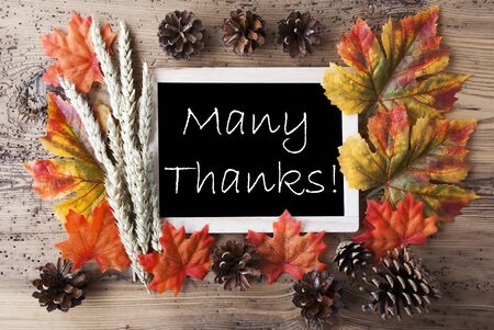 many thanks: Blackboard With Autumn Or Fall Decoration. Greeting Card For Seasons Greetings. Colorful Leaves, Fir Cone And Barley On Aged Wooden Background. English Text Many Thanks Stock Photo