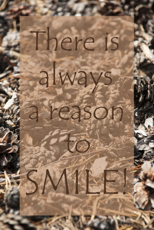 greeting season: Vertical Texture Of Fir Or Pine Cone. Autumn Season Greeting Card. English Quote There Is Always A Reason To Smile Stock Photo