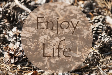 enjoy life: Texture Of Fir Or Pine Cone. Autumn Season Greeting Card. English Quote Enjoy Life