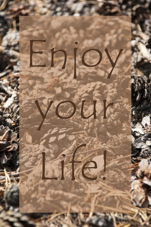 Vertical Texture Of Fir Or Pine Cone. Autumn Season Greeting Card. English Quote Enjoy Your Life Banco de Imagens