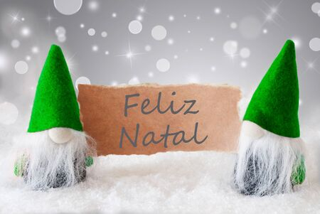 gnomos: Christmas Greeting Card With Two Green Gnomes. Sparkling Bokeh And Noble Silver Background With Snow. Spanish Text Feliz Navidad Means Merry Christmas Foto de archivo