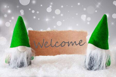 gnomos: Christmas Greeting Card With Two Green Gnomes. Sparkling Bokeh And Noble Silver Background With Snow. English Text Welcome