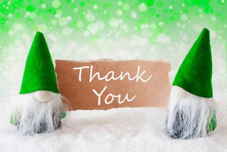 gnomos: Christmas Greeting Card With Two Green Gnomes. Sparkling Bokeh And Natural Background With Snow. English Text Thank You Foto de archivo