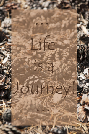 Vertical Texture Of Fir Or Pine Cone. Autumn Season Greeting Card. English Quote Life Is A Journey